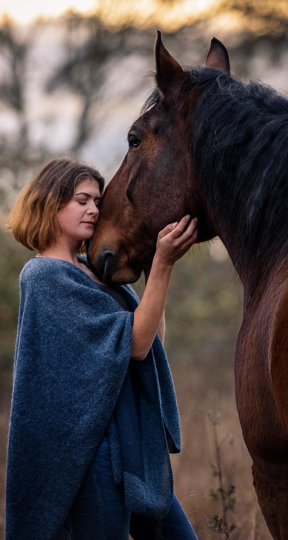 Frau nimmt zärtlich den Kopf ihres Pferdes in die Hände